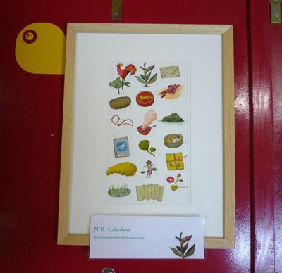 Belles plantes et petites graines-10