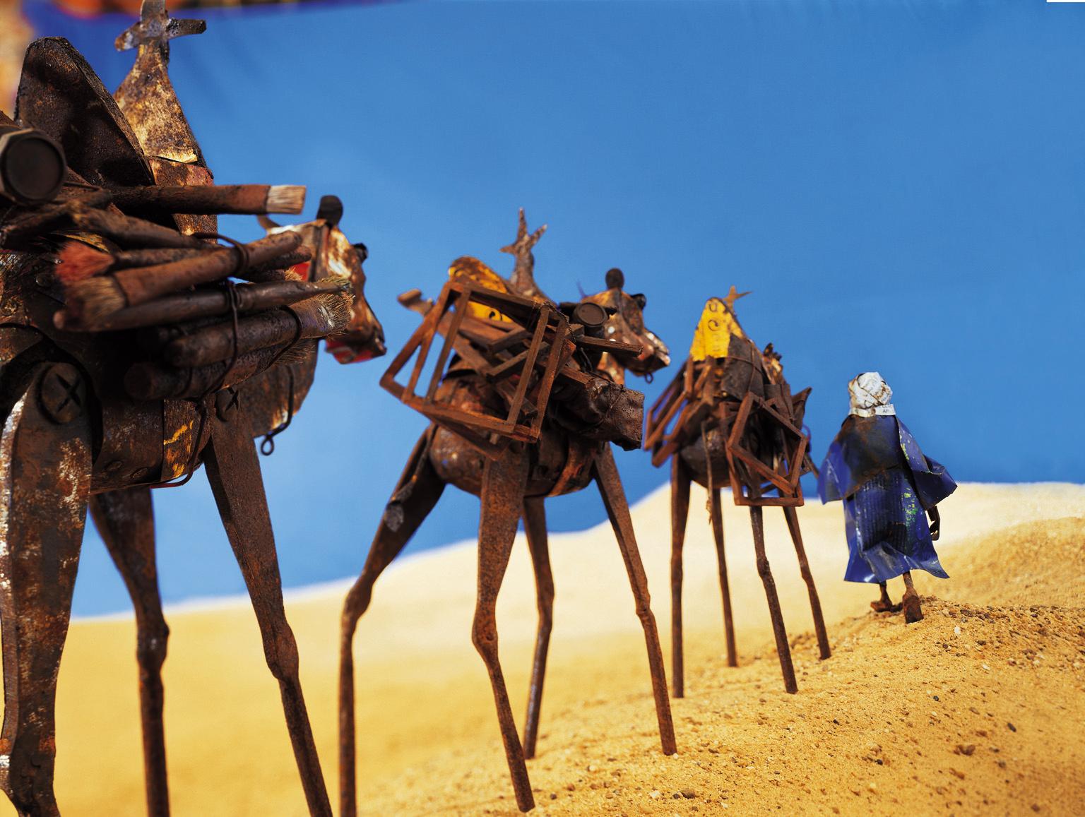 panoramique chameaux 50%